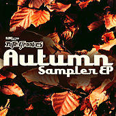 Nite Grooves Autumn EP de Various Artists