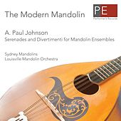 The Modern Mandolin by Sydney Mandolins