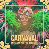 Carnaval en Santa Cruz de Tenerife de German Garcia