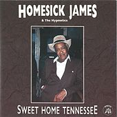 Sweet Home Tennessee by Homesick James