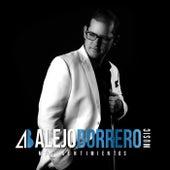 Mis Sentimientos by Alejo Borrero