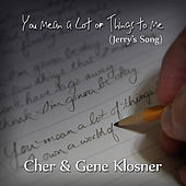 You Mean a Lot of Things to Me (Jerry's Song) - Single by Cher