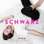 Dream (Schiller Remix) by Schwarz