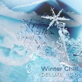 Winter Chill Deluxe 10.0 de Various Artists