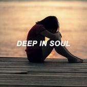 Deep in Soul van Various Artists