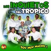 Soy Muy Macho by Los Inquietos Del Tropico
