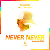 Never Never (Extended Mix) de Drenchill
