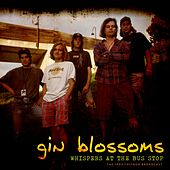 Whispers At The Bus Stop de Gin Blossoms