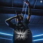 Male Rap de Various Artists