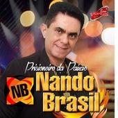 Prisioneiro da Paixão de Nando Brasil