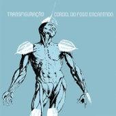 Transfiguração by Cordel do Fogo Encantado