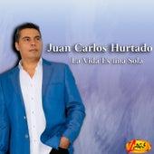 La Vida Es una Sola (El Andariego) by Juan Carlos Hurtado