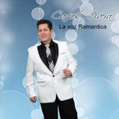 Como Me Haces Falta de Carlos Rivera La Voz Romantica