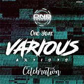 Celebration One Year de Various Artists