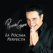 La Pócima Perfecta de Ricardo Guerra