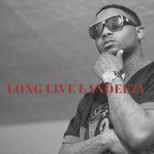 Long Live Landeezy by swank
