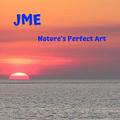 Nature's Perfect Art von JME