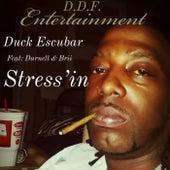 Stress'in de Duck Escubar
