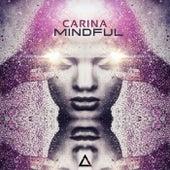 Mindful de Carina