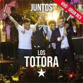 Juntos (En Vivo en el Gran Rex) by Los Totora