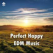 Perfect Happy EDM Music by Various Artists