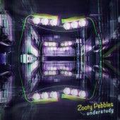 Understudy by Zooty Pebbles