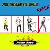 Me Dejaste Solo (Remix) de Pasto Seco