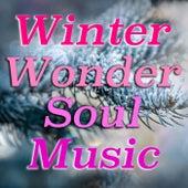 Winter Wonder Soul Music de Various Artists