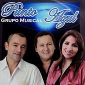Punto Azul de Grupo Musical Punto Azul