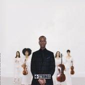 + Strings von Mark Gross