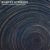You Gotta Shine Your Own Star de Harvey Schmidt