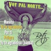 Voy Pal Norte by Betz