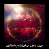 Indistinguishable Life: 2019 by Composure Artistry Group