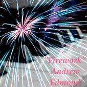 Firework von Andrew Edmond