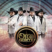 Oro Norte by Oro Norte