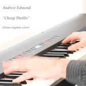 Cheap Thrills de Andrew Edmond
