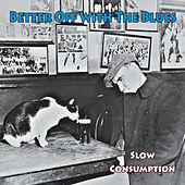 Slow Consumption by Better Off