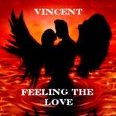 Feeling the Love de Vincent
