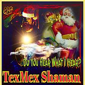 Do You Hear What I Hear ? von Texmex Shaman