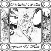 Forest of Hair by Malachai Walker