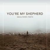 You're My Shepherd (feat. Mac Powell) by Smalltown Poets