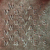 What Moves by LA Priest