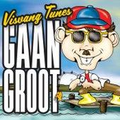 Visvang Tunes: Gaan Groot de Various Artists