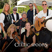 The Celtic Spoons by The Celtic Spoons