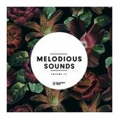 Melodious Sounds, Vol. 12 de Various Artists