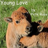 Young Love by Pete Rose