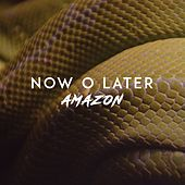 Amazon von Now O Later