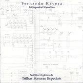 Satélites Orgânicos & Trilhas Sonoras Especiais de Fernando Kavera