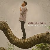 Wish You Well by Brendan James