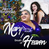 Mary Did You Know / Breath of Heaven by Christina Wells
